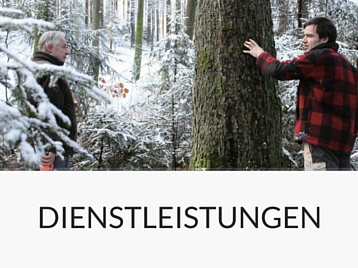 Rundholzhandels & Forstunternehmen