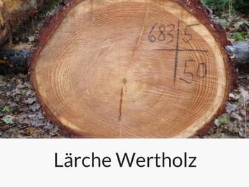 laerche-wertholz
