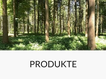 Rundholzhandel Forstunternehmen Produkte