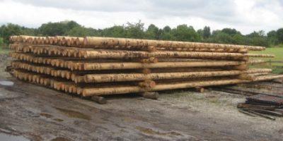 Holzmasten