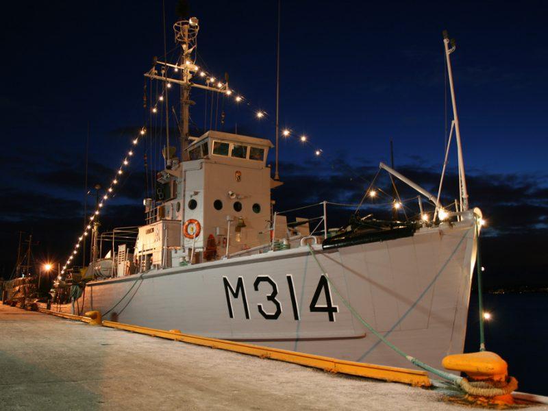 M314 Alta Minensuchboot
